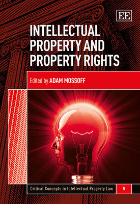 Intellectual Property and Property Rights