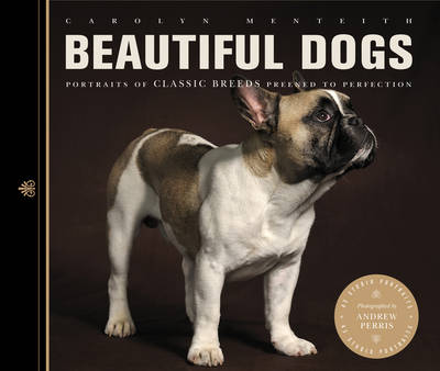Beautiful Dogs: Portraits of Champion Breeds Preened to Perfection