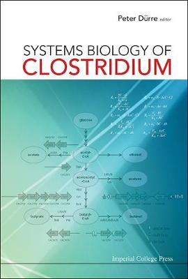 Systems Biology Of Clostridium