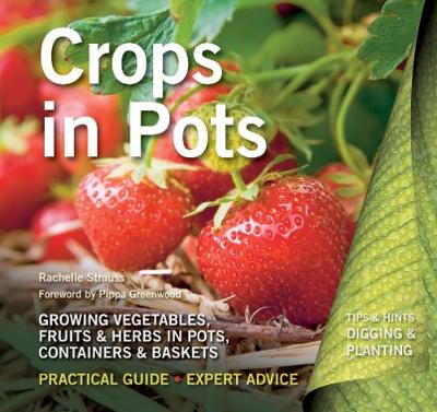 Crops in Pots: Practical Guide, Expert Advice