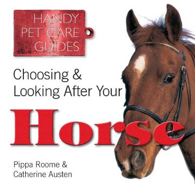 Choosing & Looking After Your Horse