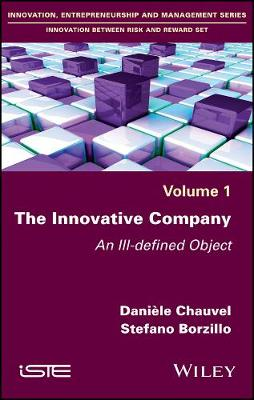 The Innovative Company: An Ill-defined Object