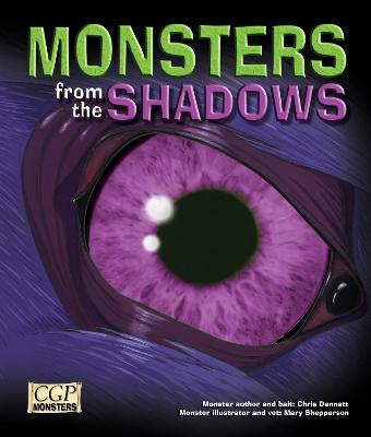 KS2 Monsters from the Shadows Reading Book