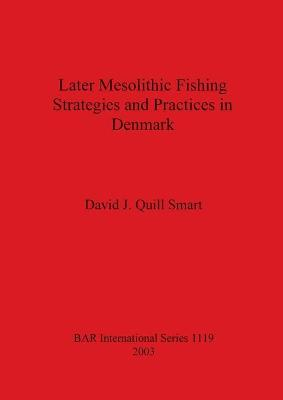 Later Mesolithic Fishing Strategies and Practices in Denmark