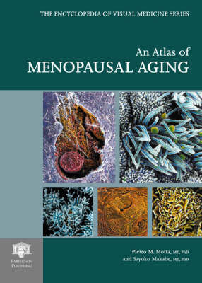 An Atlas of Menopausal Aging: A Photographic Review of Scanning Electron Microscopy