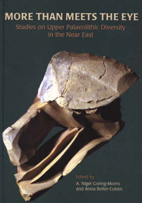 More than Meets the Eye: Studies on Upper Palaeolithic Diversity in the Near East