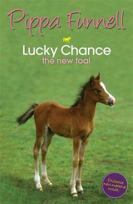 Tilly's Pony Tails: Lucky Chance the New Foal: Book 5