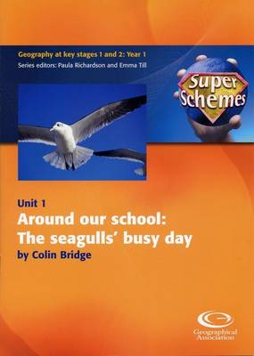 Around Our School: The Seagulls' Busy Day