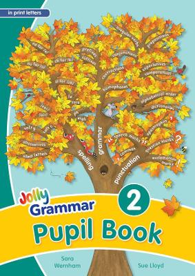 Grammar 2 Pupil Book (in print letters): in Print Letters (BE)