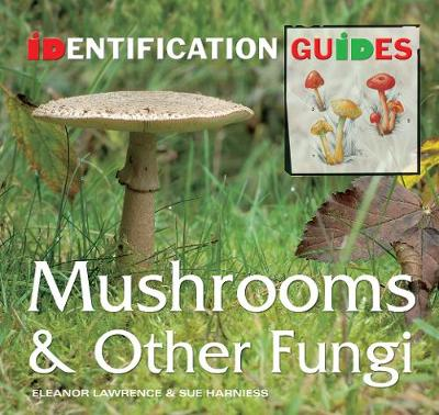 Mushrooms & Other Fungi: Identification Guide