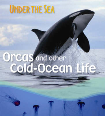 Orcas and Other Cold-ocean Life
