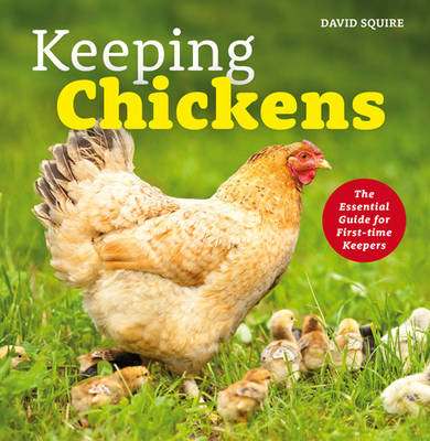 Keeping Chickens: The Essential Guide for First-time Keepers