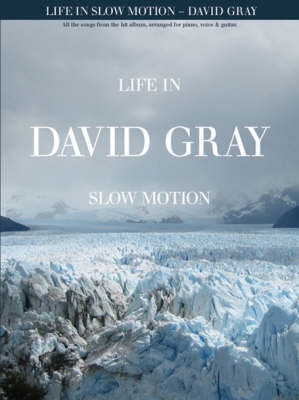 David Gray: Life In Slow Motion