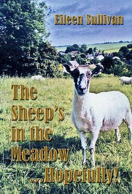 The Sheep's in the Meadow... Hopefully!