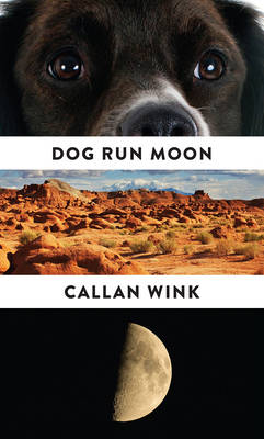 Dog Run Moon: Stories