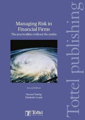 Managing Risk in Financial Firms: the Practicalities without the Maths