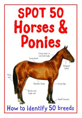 Spot 50 Horses and Ponies