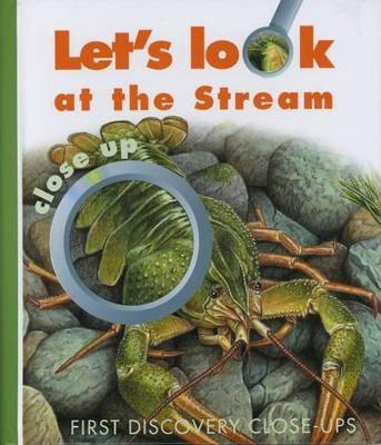 Let's Look at the Stream