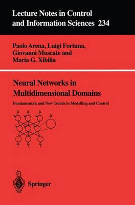 Neural Networks in Multidimensional Domains: Fundamentals and New Trends in Modelling and Control
