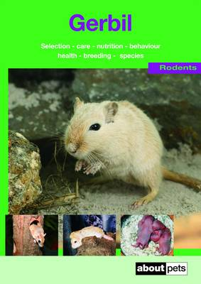 The Gerbil: A Guide to Selection, Housing, Care, Nutrition, Behaviour, Health, Breeding, Species and Colours