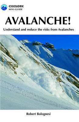 Avalanche!: A pocket guide to understanding and reducing risks from Avalanches
