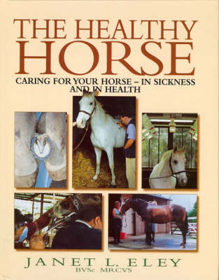 The Healthy Horse