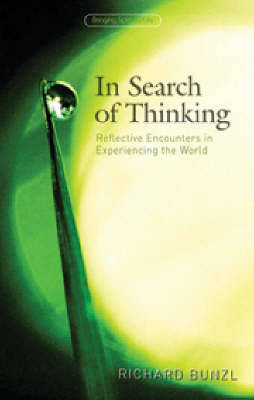 In Search of Thinking: Reflective Encounters in Experiencing the World