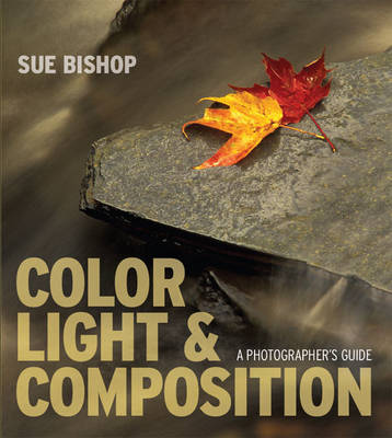 Color, Light and Composition: A Photographer's Guide