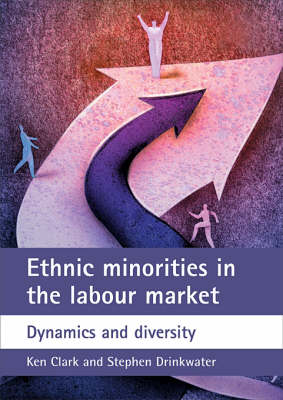 Ethnic minorities in the labour market: Dynamics and diversity