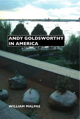 Andy Goldsworthy in America