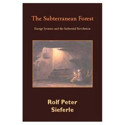 The Subterranean Forest: Energy Systems and the Industrial Revolution