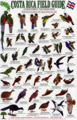 Birds of the Cloud Forest and Highlands