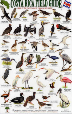 Birds of the Pacific Coast and the Tropical Dry Forest