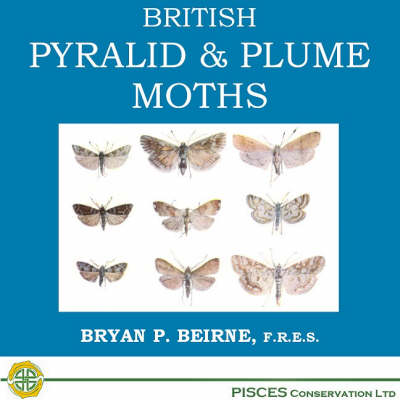 British Pyralid and Plume Moths