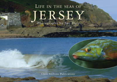 Sealife in Jersey