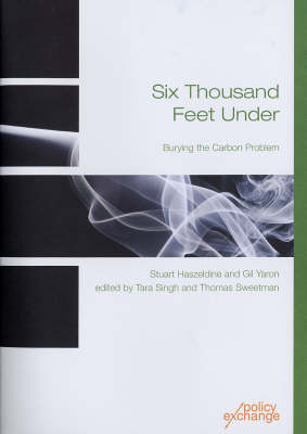 Six Thousand Feet Under: Burying the Carbon Problem