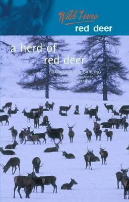 A Herd of Red Deer: A Study in Animal Behaviour