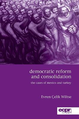 Democratic Reform and Consolidation: The Cases of Mexico and Turkey