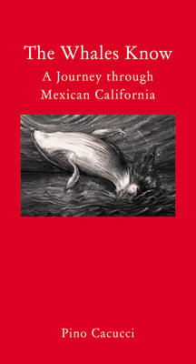 The Whales Know: A Journey Through Mexican California