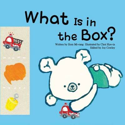 What is in the Box?: Colours