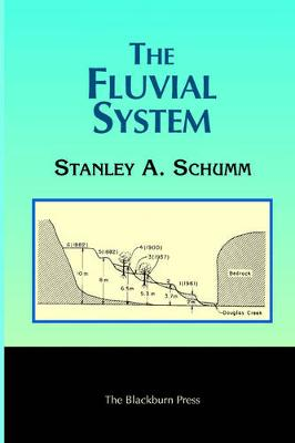 The Fluvial System