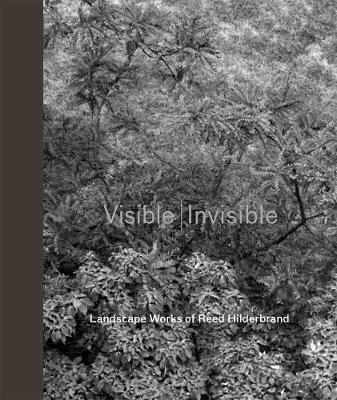 Visible/Invisible