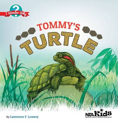 Tommy's Turtle