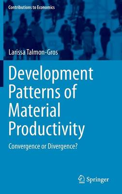Development Patterns of Material Productivity: Convergence or Divergence?