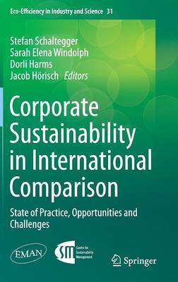Corporate Sustainability in International Comparison: State of Practice, Opportunities and Challenges