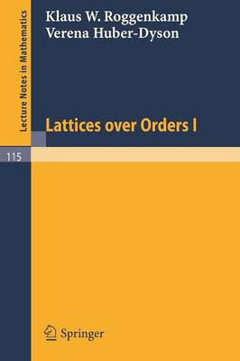 Lattices over Orders I