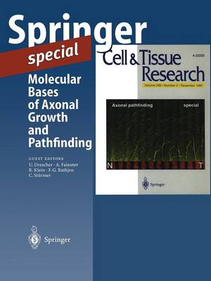 Molecular Bases of Axonal Growth and Pathfinding