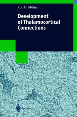 Development of Thalamocortical Connections