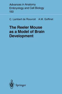 The Reeler Mouse as a Model of Brain Development