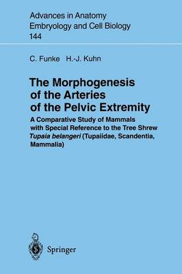 The Morphogenesis of the Arteries of the Pelvic Extremity: A Comparative Study of Mammals with special Reference to the Tree Shrew Tupaia belangeri (Tupaiidae, Scandentia, Mammalia)